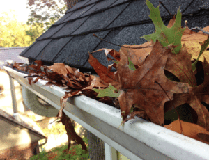 gutter cleaning issues may cause issues down the road